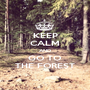 KEEP CALM AND GO TO THE FOREST - Personalised Poster A1 size