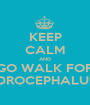 KEEP CALM AND GO WALK FOR HYDROCEPHALUS :D - Personalised Poster A1 size