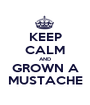 KEEP CALM AND GROWN A MUSTACHE - Personalised Poster A1 size