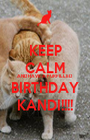 KEEP CALM AND HAVE A FURFILLED BIRTHDAY KANDI!!!! - Personalised Poster A1 size