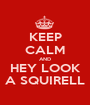 KEEP CALM AND HEY LOOK A SQUIRELL - Personalised Poster A1 size