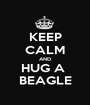 KEEP CALM AND HUG A  BEAGLE - Personalised Poster A1 size