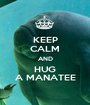 KEEP CALM AND HUG A MANATEE - Personalised Poster A1 size