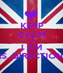 KEEP CALM AND I AM MRS. DIRECTIONER - Personalised Poster A1 size