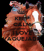 KEEP CALM AND I LOVE VAQUEJADA - Personalised Poster A1 size