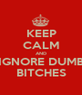 KEEP CALM AND IGNORE DUMB BITCHES - Personalised Poster A1 size