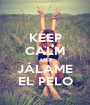 KEEP CALM AND JÁLAME EL PELO - Personalised Poster A1 size