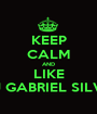 KEEP CALM AND LIKE DJ GABRIEL SILVA - Personalised Poster A1 size