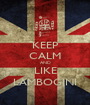 KEEP CALM AND LIKE LAMBOGINI - Personalised Poster A1 size