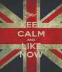 KEEP CALM AND LIKE NOW - Personalised Poster A1 size