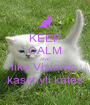 KEEP CALM AND like Visiems, kas myli kates - Personalised Poster A1 size