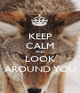 KEEP CALM AND LOOK AROUND YOU - Personalised Poster A1 size