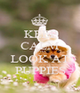 KEEP CALM AND LOOK AT PUPPIES - Personalised Poster A1 size