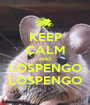 KEEP CALM AND LOSPENGO LOSPENGO - Personalised Poster A1 size