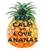 KEEP CALM AND LOVE ANANAS - Personalised Poster A1 size
