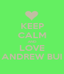 KEEP CALM AND LOVE ANDREW BUI - Personalised Poster A1 size