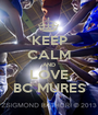 KEEP CALM AND LOVE BC MURES - Personalised Poster A1 size