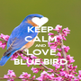 KEEP CALM AND LOVE BLUE BIRD - Personalised Poster A1 size