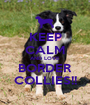 KEEP CALM AND LOVE BORDER COLLIES!! - Personalised Poster A1 size