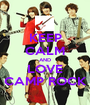 KEEP CALM AND LOVE CAMP ROCK - Personalised Poster A1 size