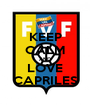 KEEP CALM AND LOVE CAPRILES - Personalised Poster A1 size