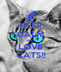 KEEP CALM AND LOVE CATS!! - Personalised Poster A1 size