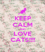 KEEP CALM AND LOVE CATS!!!! - Personalised Poster A1 size