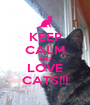 KEEP CALM AND LOVE CATS!!! - Personalised Poster A1 size