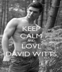 KEEP CALM AND LOVE DAVID WITTS - Personalised Poster A1 size