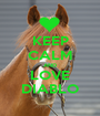 KEEP CALM AND LOVE DIABLO - Personalised Poster A1 size