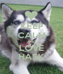 KEEP CALM AND LOVE HASK - Personalised Poster A1 size