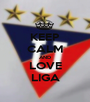 KEEP CALM AND LOVE LIGA - Personalised Poster A1 size