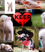 KEEP CALM AND LOVE PIGS - Personalised Poster A1 size