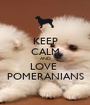 KEEP CALM AND LOVE  POMERANIANS - Personalised Poster A1 size