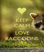 KEEP CALM AND LOVE RACCOONS - Personalised Poster A1 size