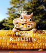 KEEP CALM AND LOVE RUFUS! ;x - Personalised Poster A1 size