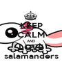 KEEP CALM AND LOVE salamanders - Personalised Poster A1 size