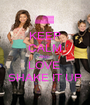 KEEP CALM AND  LOVE  SHAKE IT UP - Personalised Poster A1 size