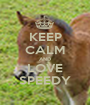 KEEP CALM AND LOVE SPEEDY - Personalised Poster A1 size