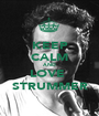 KEEP CALM AND LOVE  STRUMMER - Personalised Poster A1 size