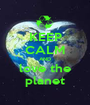 KEEP CALM AND love the planet - Personalised Poster A1 size
