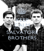 KEEP CALM AND LOVE THE SALVATORE BROTHERS - Personalised Poster A1 size