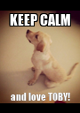 KEEP CALM and love TOBY! - Personalised Poster A1 size