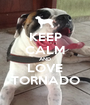 KEEP CALM AND LOVE TORNADO - Personalised Poster A1 size