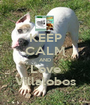 KEEP CALM AND Love Villalobos - Personalised Poster A1 size