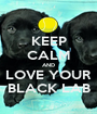 KEEP CALM AND LOVE YOUR BLACK LAB - Personalised Poster A1 size
