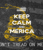 KEEP CALM AND 'MERICA  - Personalised Poster A1 size