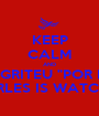 "KEEP CALM AND NO GRITEU ""POR FIN"" JOAN CARLES IS WATCHING YOU - Personalised Poster A1 size"