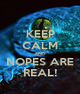 KEEP CALM AND NOPES ARE REAL! - Personalised Poster A1 size