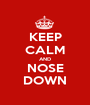 KEEP CALM AND NOSE DOWN - Personalised Poster A1 size